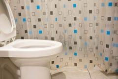 Wezbrana toaleta Obraz Royalty Free