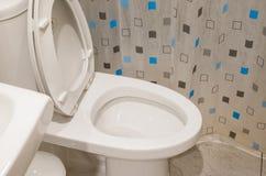 Wezbrana toaleta Zdjęcie Royalty Free