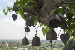 Wezwania drzewo obrazy stock