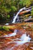 WF Somersby flat delta vert. Blurred flowing down waters of Somersby waterfall in evergreen gumtree forest on Central Coast in Australia. Milty fresh water Stock Photo