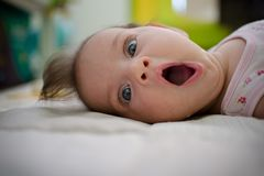 Whaaat... Out of Milk?! royalty free stock photo