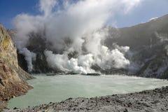 Whakaari of het Witte meer van de Eilandkrater in Nieuw Zeeland stock afbeeldingen