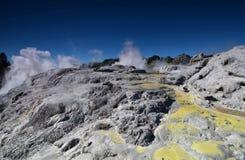 Whakarewarewa dal av Geysers i nya Zelandii Geotermalny parkerar Royaltyfria Foton