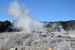 Whakarewarewa dal av Geysers i nya Zelandii Geotermalny parkerar Arkivfoton