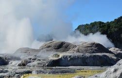 Whakarewarewa dal av Geysers Nya Zelandiiya Geotermalny parkerar Arkivfoto