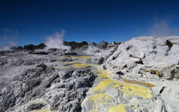 Whakarewarewa dal av Geysers Nya Zelandiiya Geotermalny Rese Fotografering för Bildbyråer