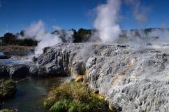 Whakarewarewa-Tal von Geysiren in neuem Zelandii Geotermalny-Park Stockfoto