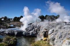 Whakarewarewa-Tal von Geysiren in neuem Zelandii Geotermalny-Park Stockbilder