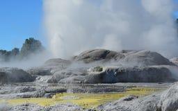 Whakarewarewa-Tal von Geysiren in neuem Zelandii Geotermalny-Park Lizenzfreies Stockfoto