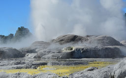 Whakarewarewa Valley of Geysers in New Zelandii.Geotermalny park Royalty Free Stock Photo