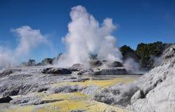 Whakarewarewa Valley of Geysers. New Zelandiiya.Geotermalny park Royalty Free Stock Photo
