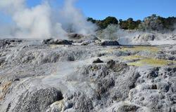 Whakarewarewa Valley of Geysers. New Zelandiiya.Geotermalny Rese Stock Image