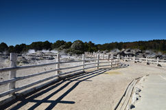 Whakarewarewa Valley of Geysers. New Zelandiiya.Geotermalny Rese Stock Photo