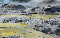 Whakarewarewa Valley of Geysers. New Zelandiiya.Geotermalny Rese Royalty Free Stock Photos