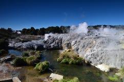 Free Whakarewarewa Valley Of Geysers In New Zelandii.Geotermalny Park Stock Photo - 43864600
