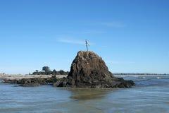 Whakatane dama na skale w zatoce obfitość, Nowa Zelandia zdjęcie stock