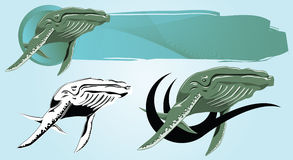 Whale. Vector drawing of a floating Whale for design and tattoos Royalty Free Stock Image