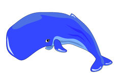 Whale Royalty Free Stock Image