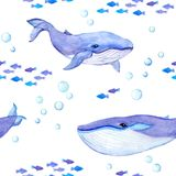 Whale animals. Sea seamless patterns with whales, fishes. Watercolor. Whale animals. Sea seamless patterns with whales and fishes. Watercolor vector illustration