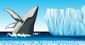 A whale in antarctica. Illustration vector illustration