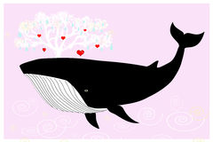 Whale Royalty Free Stock Images