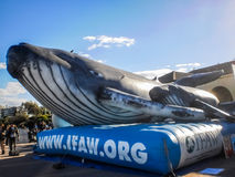 Whale balloon exhibition Stock Photo