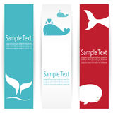 Whale banners Stock Photography