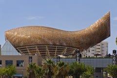 Whale Barcelona Spain Stock Image