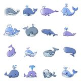 Whale blue tale fish icons set, cartoon style. Whale blue tale fish icons set. Cartoon illustration of 16 whale blue tale fish vector icons for web Royalty Free Stock Photography