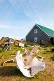 Whale bones in Djúpalónssandur museum, Iceland Stock Images