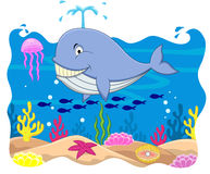 Whale cartoon Stock Photos
