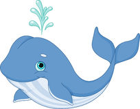 Whale Cartoon. Illustration of cute cartoon whale
