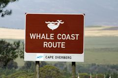 Whale Coast Route sign. Sign for the Whale Coast Route on the highway outside Gansbaai, South Africa royalty free stock images
