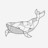 Whale coloring book for adults vector illustration Royalty Free Stock Images