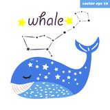 Whale constellation illustration. Vector cartoon style constellatin of whale. Funny element for children books, kids textile prints, poster, sticker, decoration Stock Photography
