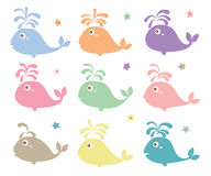 Whale cute color set. This illustration is design and drawing color whale with water splash and decoration flower in isolated object on white color background Royalty Free Stock Photography