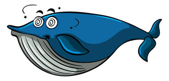 Whale with dizzy face Royalty Free Stock Image