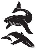 Whale. The figure shows a whale Stock Photos