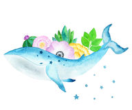 Whale with flowers on back. Royalty Free Stock Image