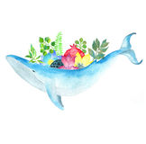 Whale with flowers on back. Stock Photo