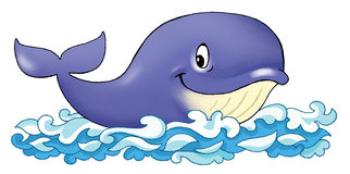 Whale funny cartoon blue pattern Stock Photos