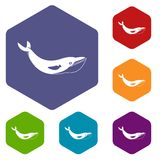 Whale icons set hexagon. Isolated vector illustration Royalty Free Stock Images