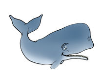 Whale illustration Royalty Free Stock Photo