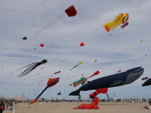 Whale Kite Stock Images