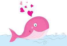 Whale in love Stock Photos
