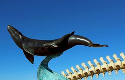 The whale model at the Cabrillo National Monument. Under blue sky at the Point Loma Lighthouse End of Cabrillo Memorial Drive, point Loma, San Diego, CA stock photos