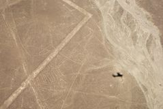 Whale, Nazca lines Royalty Free Stock Images