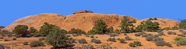 Whale Rock. Rock Formation called Whale Rock, Canyonlands National Park, Utah royalty free stock image