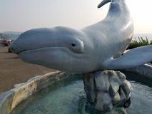 Whale and rock water fountain in Newport, Oregon royalty free stock photography
