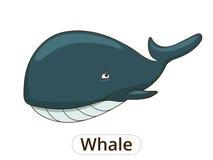 Whale sea animal fish cartoon illustration Stock Images